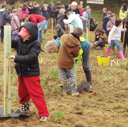 Children Planting Trees Stowey Green Spaces